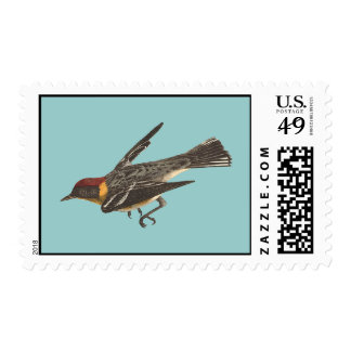 The Bay-breasted Warbler (Sylvicola castanea) Stamp