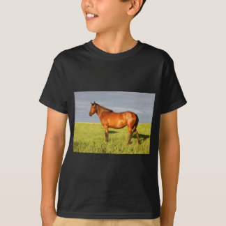 The Bay Mare T-Shirt