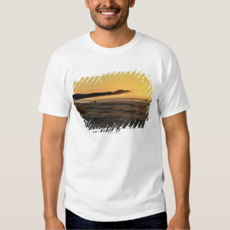 The Bay of Fires on Tasmania's East Coast 2 T Shirt