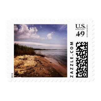 The Bay Stamp