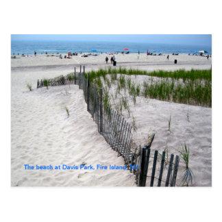 The Beach at Davis Park Postcard