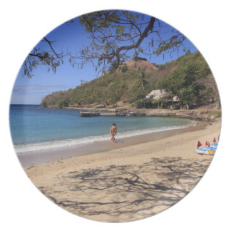 The beach at Pigeon Island National Park Plate
