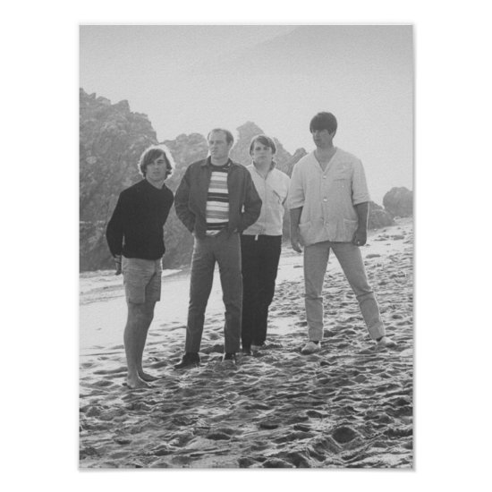 The Beach Boys   The Original Members Poster