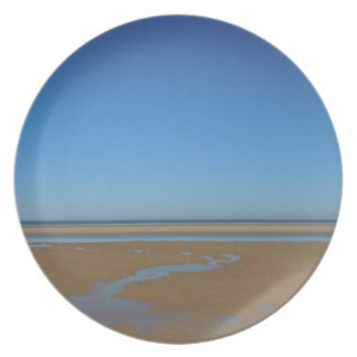 THE BEACH PARTY PLATE