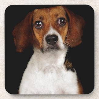 The Beagle Beverage Coaster