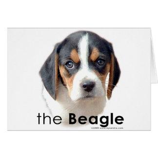 The Beagle Greeting Card
