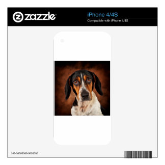 The Beagle Mix Decal For The iPhone 4