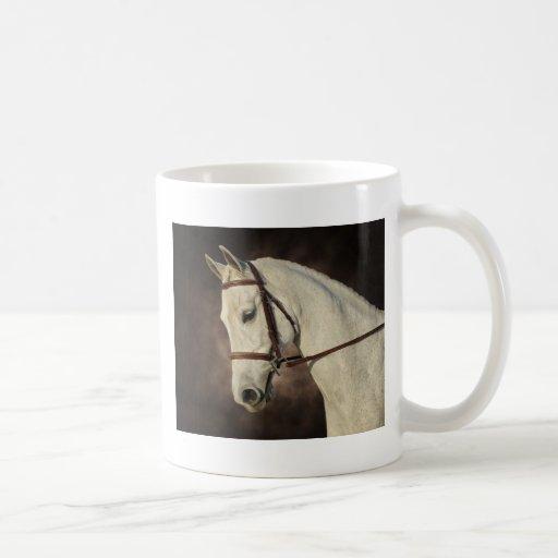 The Beautiful Arabian Mugs