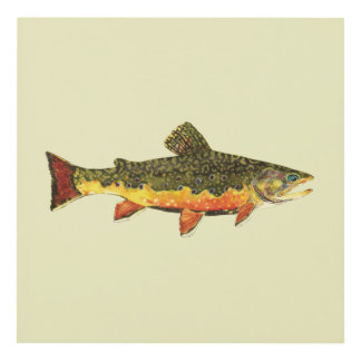 The Beautiful Brook Trout Panel Wall Art