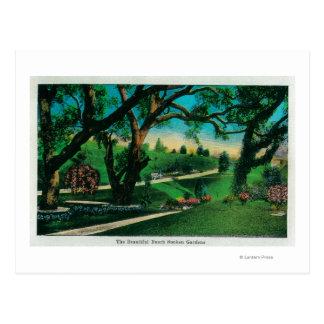 The Beautiful Busch Sunken GardensPasadena, CA Postcard