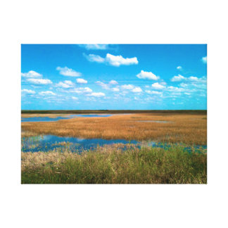 The Beautiful Florida Everglades Canvas Print