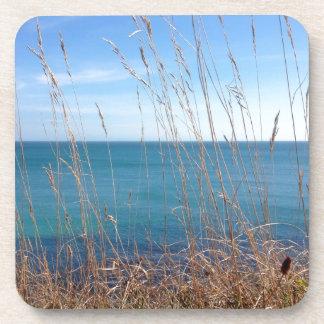 The beautiful Grass and Sea Coasters