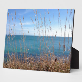 The beautiful Grass and Sea Display Plaques