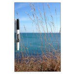 The beautiful Grass and Sea Dry Erase Board