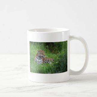 The Beautiful Jaguar Coffee Mugs