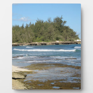 The Beautiful Turtle Bay in Oahu Hawaii Plaque