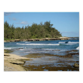 The Beautiful Turtle Bay in Oahu Hawaii Poster
