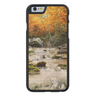 The beautiful waterfall in forest, autumn carved maple iPhone 6 case