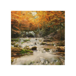 The beautiful waterfall in forest, autumn wood wall decor