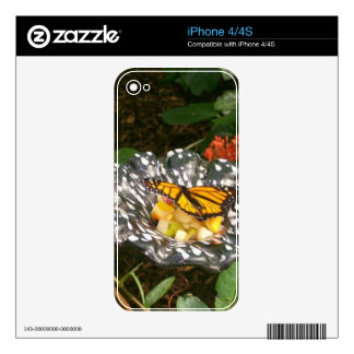 The Beauty of a Butterfly. iPhone 4S Decal