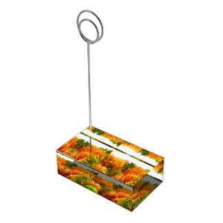 THE BEAUTY OF AUTUMN table card holder