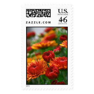 The Beauty of Fall Postage