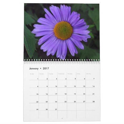 The Beauty of Flowers 2008 Calendar