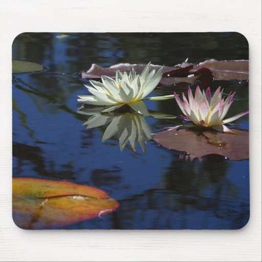 The Beauty of Mother Nature Mouse Pad