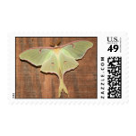 The Beauty of Night Postage Stamp