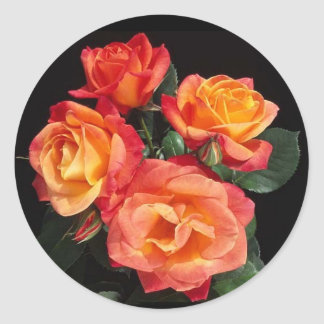 The Beauty of Roses Classic Round Sticker