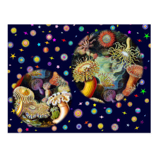 The Beauty of Sea A1 (inspired by Ernst Haeckel) Postcard