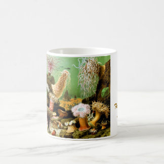 The Beauty of Sea (by Ernst Haeckel) Coffee Mug