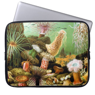 The Beauty of Sea (by Ernst Haeckel) Laptop Sleeve