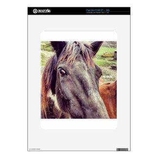 The Beauty of the Horse Skin For The iPad