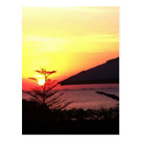 The Beauty of the Sunset View Postcard (<em>$1.10</em>)