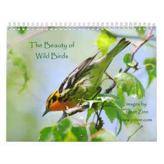 The Beauty of Wild Birds Calendar
