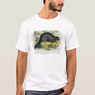 The Beaver, educational illustration pub. by the S T-Shirt