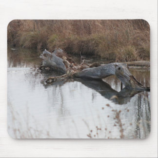 The Beavers Lair Mouse Pad