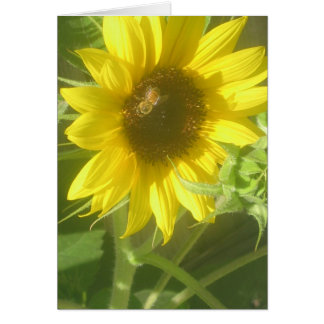 The Bee s Knees Card