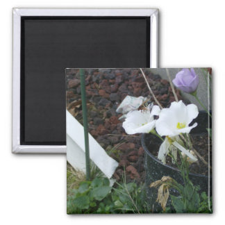 The Bees and The Lisas 2 Inch Square Magnet