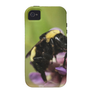 The Bee's Knees iPhone 4 Case