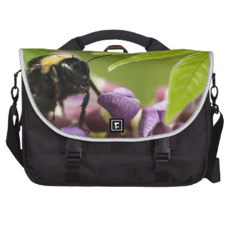 The Bee's Knees Laptop Computer Bag
