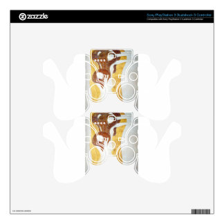 The Beethoven Frieze: The Longing for Happiness Fi PS3 Controller Skins