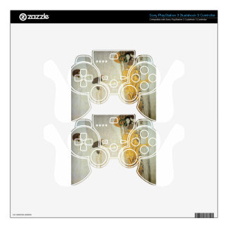 The Beethoven Frieze: The Longing for Happiness Skins For PS3 Controllers