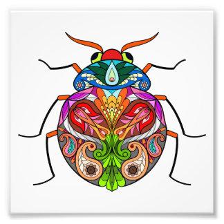 The Beetle Photo Print