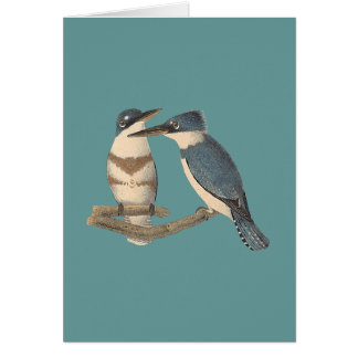 The Belted Kingfisher (Alcedo alcyon) Greeting Card
