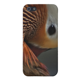 the bend mandarin duck iPhone 5 cover