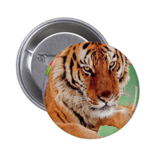 The Bengal Tiger Buttons