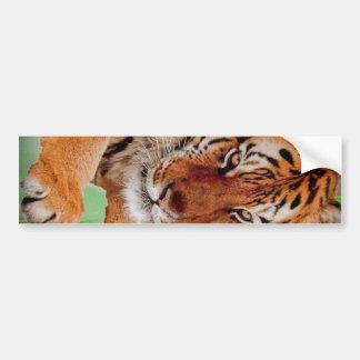 The Bengal Tiger Car Bumper Sticker