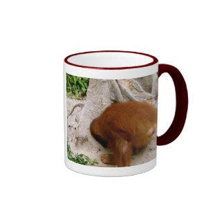 The Best Father coffee cup